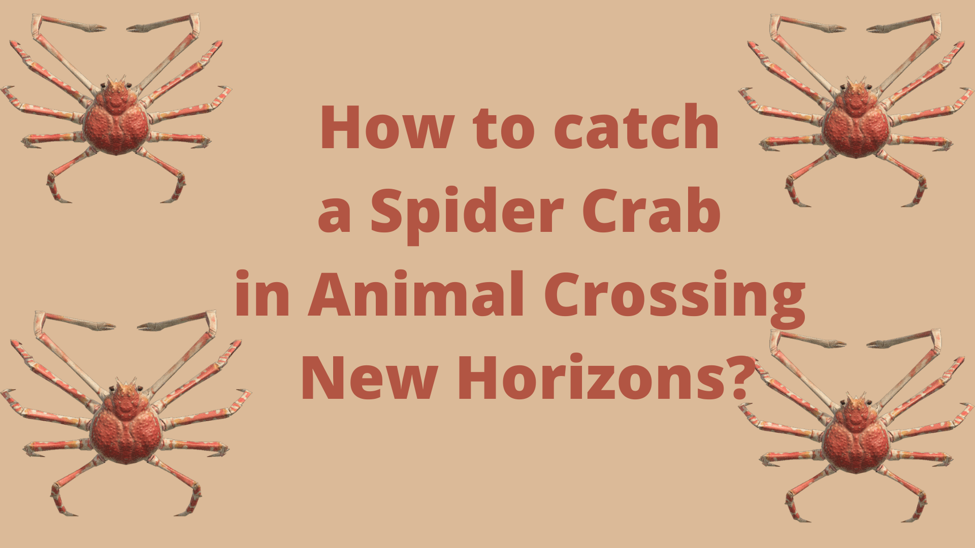 How to catch a Spider Crab in Animal Crossing New Horizons_