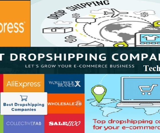The 7 Best Dropshipping Companies and Suppliers in 2020 (Honest Review)