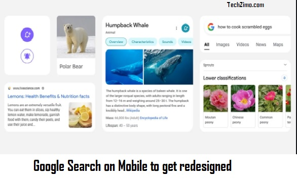 Google search on mobile to get redesigned