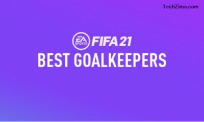FIFA 21 best Goalkeepers
