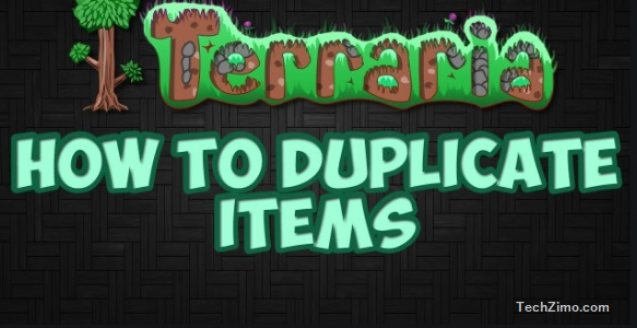 How to duplicate items in Terraria